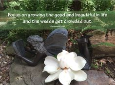 Focus on growing the good and beautiful in life and the weeds get crowded out, gardens all, garden quotes, quote garden