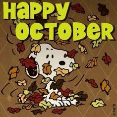 In A Charlie Brown Thanksgiving, Snoopy served the gang two slices of buttered toast, some pretzel sticks, a handful of popcorn and a few jelly beans. Snoopy Halloween, Fall Halloween, Happy November, Hello October, October Born, October Fall, Oct 1, Happy Wednesday, Peanuts Cartoon