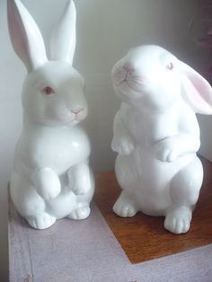 Fitz and Floyd --- Rabbits