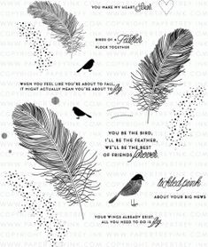 Feather Finery Stamp Set  PTI