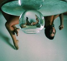 Living In A Fishbowl - Dana Trippe