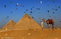 egyptt