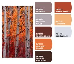 autumn #paint colors