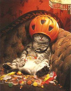 Así voy a quedar en halloween
