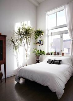 bedroom full of plants http://www.brownstoner.com/interiors-renovation/interior-design-ideas-plants-brooklyn-loft-east-williamsburg-tula/