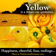 Yellow as a dream symbol can mean... More at TheCuriousDreamer dictionary...  #dreams #dreammeaning #dreamsymbols