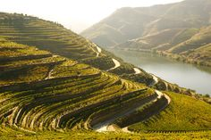 Portugal: 7 natural wonders - via Heart of a Vagabond 16.12.2014 | Portugal is a magical place. Despite being a tiny coastal country, if offers an incredible diversity in climate, nature and scenery. Photo: Douro River and Valley