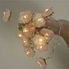 Pink Tipped Ivory White Shabby Rose Fairy Lights by PamelaAngus