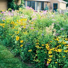 displays of single colors from plants they favor, such as butterfly bush. Massing individual flower species in large, informal drifts -- suc...