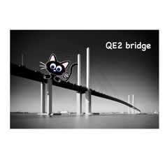 Knot QE2 bridge conquered #bridges #bridge #fear #phobia