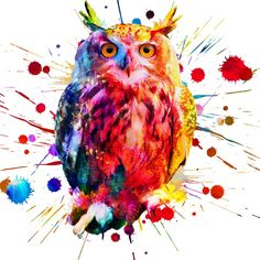 I will do creative trendy watercolor t shirt design shirt design, #trendy, #advertisement, #creative, #watercolor Watercolor Design, Shirt Designs, Concept, Creative, T Shirt, Animals, Colour, Supreme T Shirt, Color