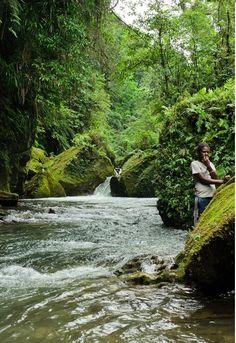 millennium cave - vanuatu Vanuatu, Our World, Islands, Paradise, Wildlife, Tropical, Earth, Gallery, Places
