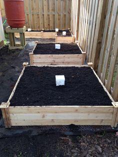 Raised beds finished