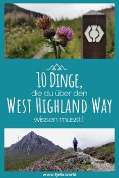 10 Dinge, die du unbedingt vor deiner Wanderung über den West Highland Way wissen solltest!     #wandertour #wandern #schottland #westhighlandway #weitwanderweg #highlands #trekking #bennevis Wanderroute, Wandern, Berge, Touren, Wandertour, Loch Lomond, Ben Nevis, Munro Glasgow, West Highland Way, Great Britain, Loch Lomond, Scotland, Travel Destinations, Hiking, Outdoor, Mountains