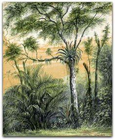 Paisagem de Floresta Tropical em Santa Tereza - Rio de Janeiro - Têmpera sob papel de Friedrich Hagedorn - Alemanha 1814 /id. 1889  http://sergiozeiger.tumblr.com/post/100774411423/friedrich-hagedorn-chega-ao-brasil-em-1850  Chega ao Brasil em 1850, fixando-se no Rio de Janeiro, onde monta seu ateliê. Faz parte do numeroso grupo de pintores e desenhistas alemães que aqui chegaram dando a sua contribuição documental e histórica para a arte no Brasil.
