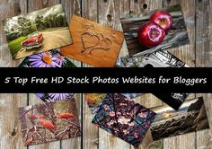 Top 5 Absolute Free HD Stock Photos Websites for Bloggers Stock Photo Websites, Hd Images, Programming, How To Make Money, Wordpress, Tutorials, Stock Photos, Blog, Free