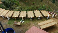 We're bringing you #farmtocup coffee: Costa Rica (Tarrazu Cerro Verde)
