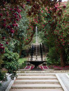 Holker Hall Garden - Cumbria, England