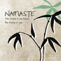 Namaste' ~ The Divine In Me Honors The Divine In You