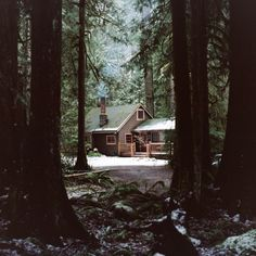 if this is not in here already why not? cabin in woods