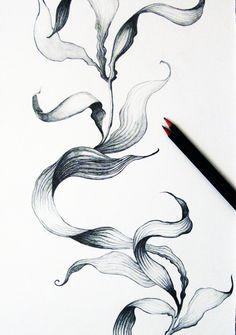 Tamara Schneider of Funky Wombat Textiles ~ seaweed drawing