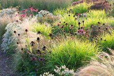 home and garden siergras Prairie Garden, Garden Cottage, Home And Garden, Landscape Borders, Sky Images, Sloped Garden, Plant Species, Plant Design, Dream Garden