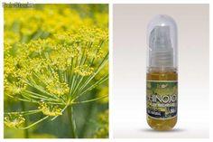 Aceite esencial de Hinojo. Presentación de 30 ml. Disponible en Solostocks. Precios por compras pequeñas y al por mayor. :)