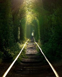 Abandoned Train Tracks, Ukraine x by Abandoned Train, Abandoned Places, Abandoned Castles, Haunted Places, Abandoned Mansions, Places To Travel, Places To See, Beautiful World, Beautiful Places