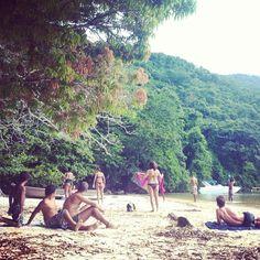 Ilha grande Stuff To Do, Dolores Park, Explore, Day, Travel, Big Island, The Beach, Brazil, Viajes