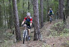 One of the off-road Croom trails in the Withlacoochee State Forest.