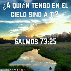 Salmos 73:25