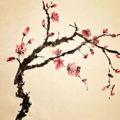 Picture of Chinese painting, traditional art with flower in color on art paper. stock photo, images and stock photography. Japanese Painting, Chinese Painting, Chinese Art, Japanese Artwork, Chinese Dragon, Chinese Flowers, Japanese Flowers, Cherry Blossom Painting, Cherry Blossoms