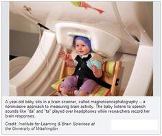 » Months Before Their First Words, Babies' Brains Rehearse Speech Mechanics