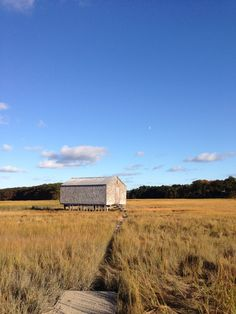 October on the marsh, Essex, MA Photo by Jill Bent