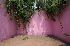 Barragan - master of hardscape...his gardens are incredibly textured and interesting without apparent ornament.  Even better in person!