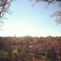 Fredericksburg, Virginia, beautiful view photography blue skies and changing trees!