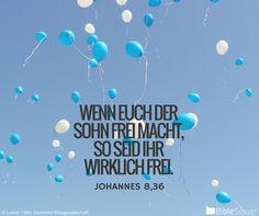Nachzulesen auf BibleServer   Johannes 8,36
