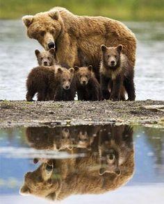 My Family…. Amazing World