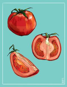I have sliced a tomato. Tomato Drawing, 30 Day Drawing Challenge, Nature Sketch, Watercolor Fruit, Bad Art, Object Drawing, Fruit Painting, Guache, Sketch Painting