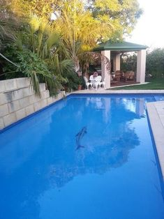 Bring your pool back to life with our pool renovation services! Find us at www.poolresurfacingperth.com.au Or call us on 0413872261 for a free quote Free Quotes, Perth, Restoration, Life