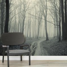 black-white-forest-pathway-square-wall-murals