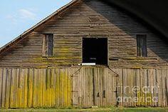 Teresa Johnson - Ageless Barn