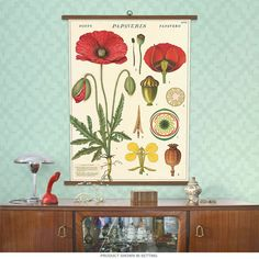 Decorate your home, classroom or office with a vintage style wall hanging at an affordable price! This generously sized 28 x 40 inch poster comes assembled and ready to display. It even includes the nail! Just like the vintage versions, this chart is mounted with two half dowels holding the top and two half dowels holding the bottom. Printed on heavyweight Italian paper stock and assembled in the USA using wooden dowels that are sustainably sourced. The printing of the poster is done in…