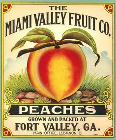 Miami Valley Fruit Company Peaches