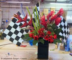 Dr Delphinium, Texas Motor Speedway flowers