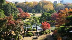 Rikugien - a beautiful park tucked away in Tokyo
