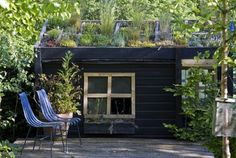 roof-top-shed-garden.jpg