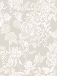 Cole and Son Tivoli wallpaper in Grey from The Folie Collection Grey Wallpaper Samples, Grey Floral Wallpaper, Wall Wallpaper, Designer Wallpaper, Grey And White Wallpaper, Blog Wallpaper, Floral Wallpapers, Luxury Wallpaper, Custom Wallpaper