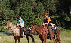 #Natur #Reiten #tiroleroberland Rafting, Horses, Animals, Outdoor Adventures, Horseback Riding, Summer Recipes, Nature, Animales, Animaux