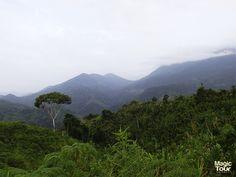 Sierra Nevada de Santa Marta #Lostcitytrek #Nature #Travellers #Adventures #Welovetravel #Cultures